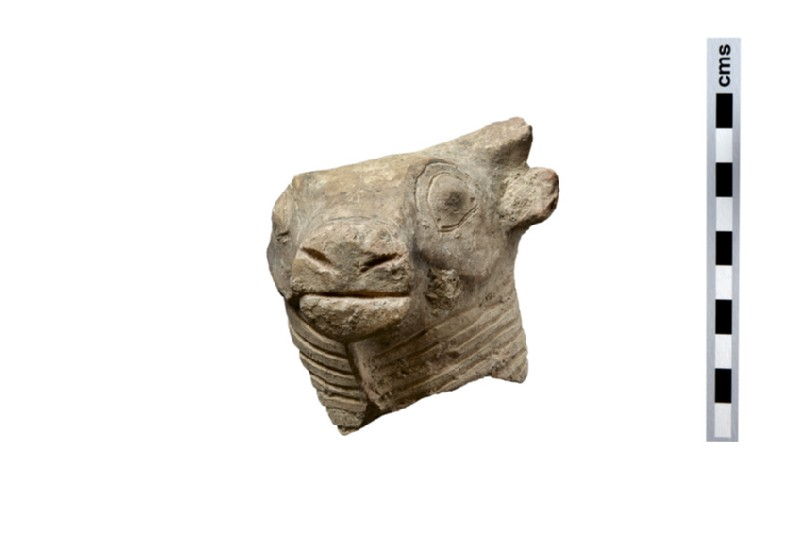 Bull's head, fragment of a bull statuette