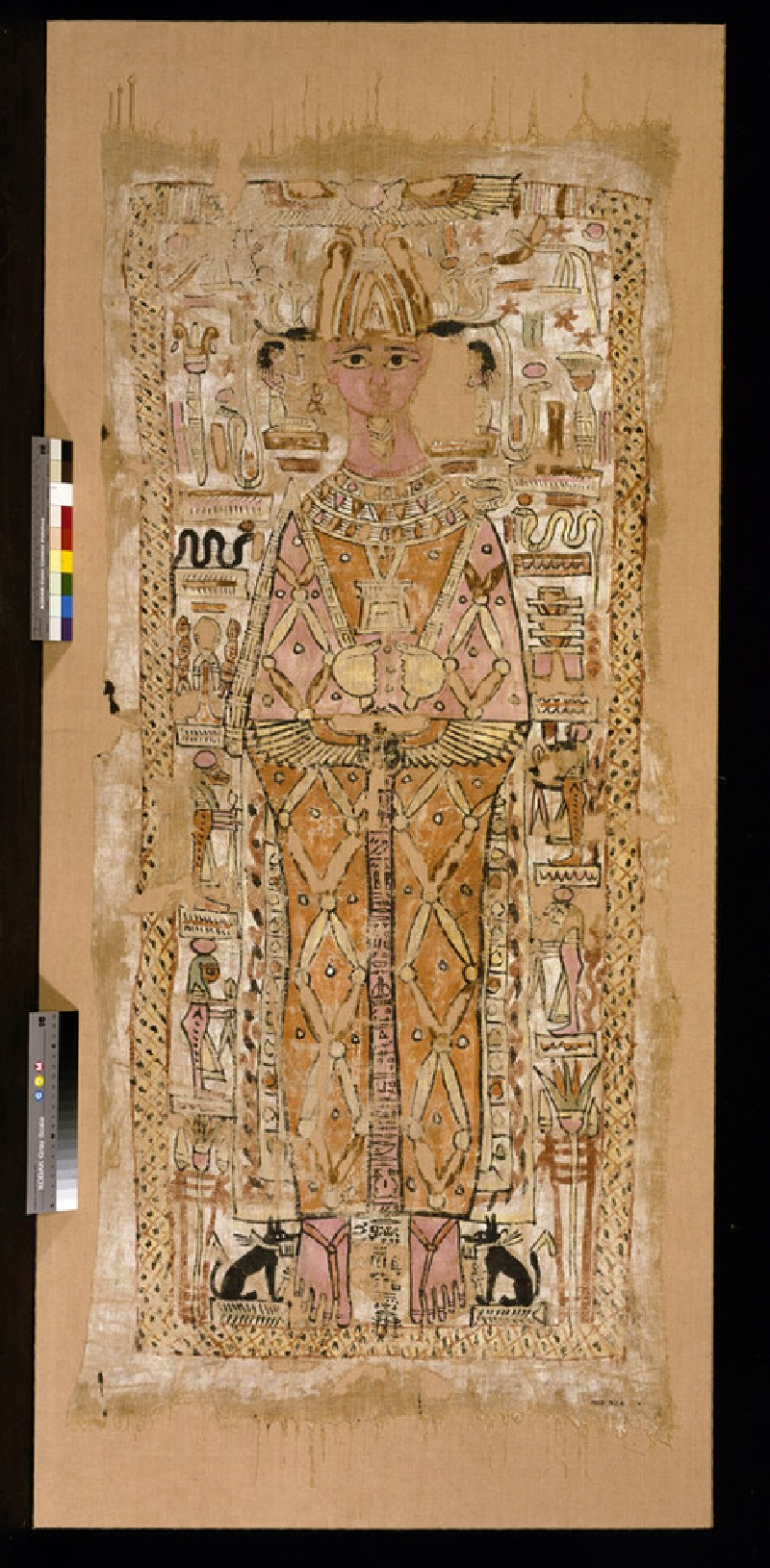 Shroud of Nespawtytawy (AN1913.924)