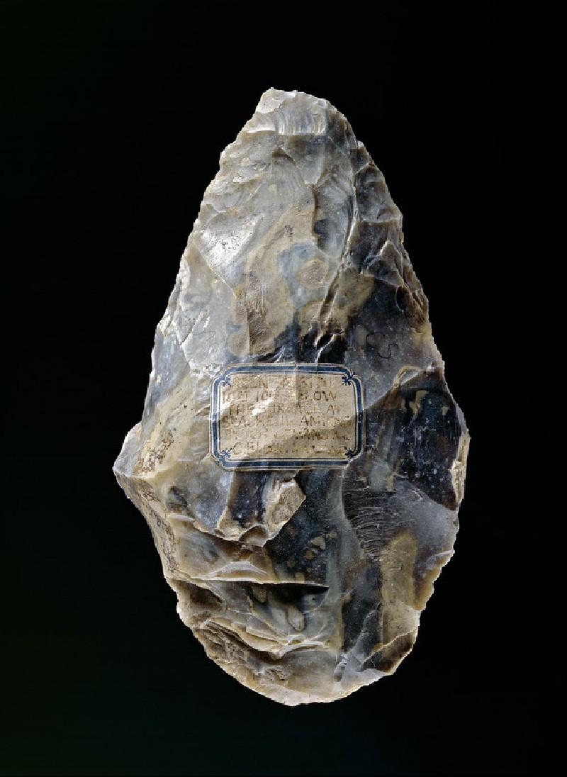 (AN1928.221.g)