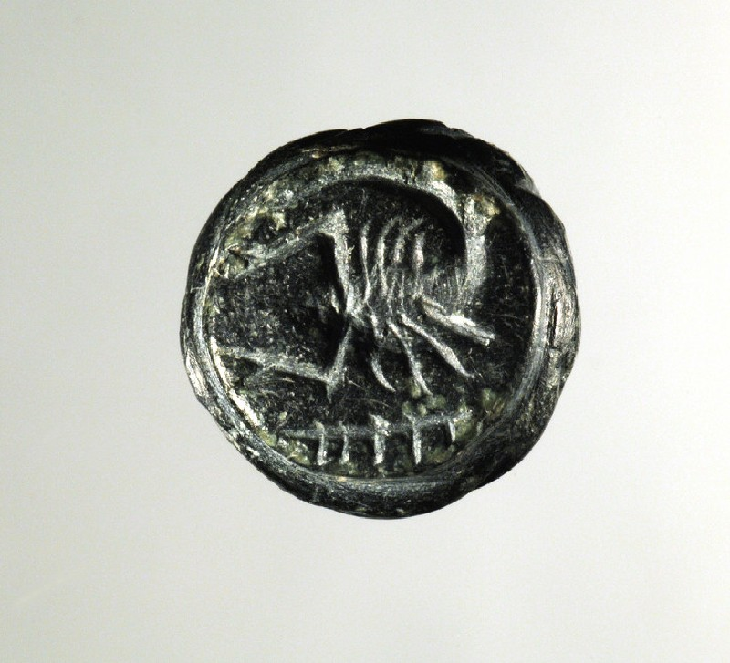 Pear- or bottle-shaped, black steatite loop signet (Petschafte) seal: on the face of the signet a scorpion (AN1938.776)