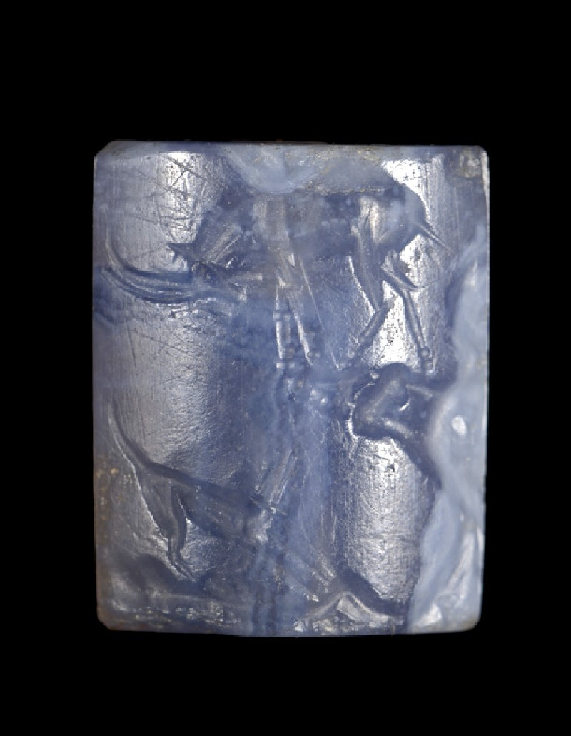 Blue chalcedony cushion seal depicting dog barking at wild goat (AN1938.954)