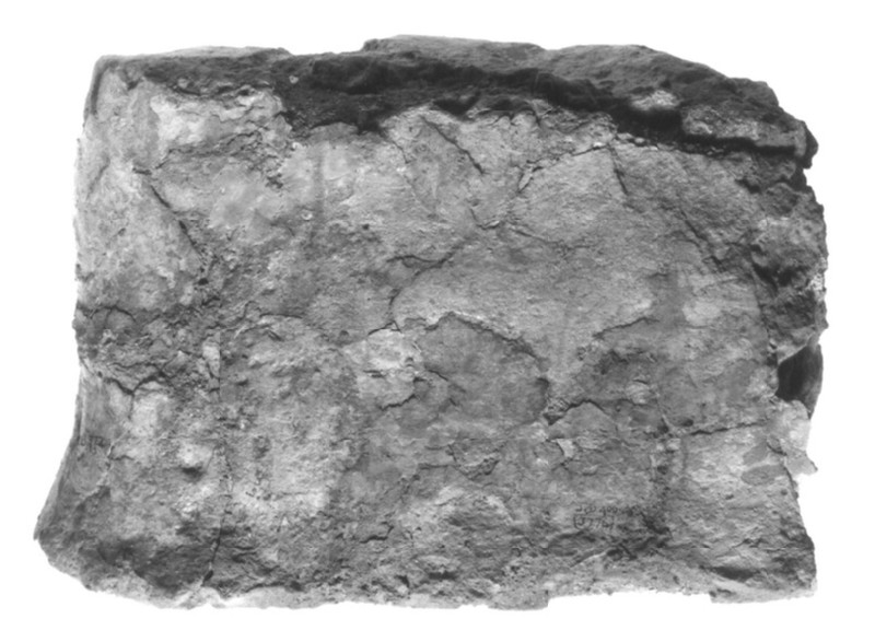 Fragment of torso from figurine