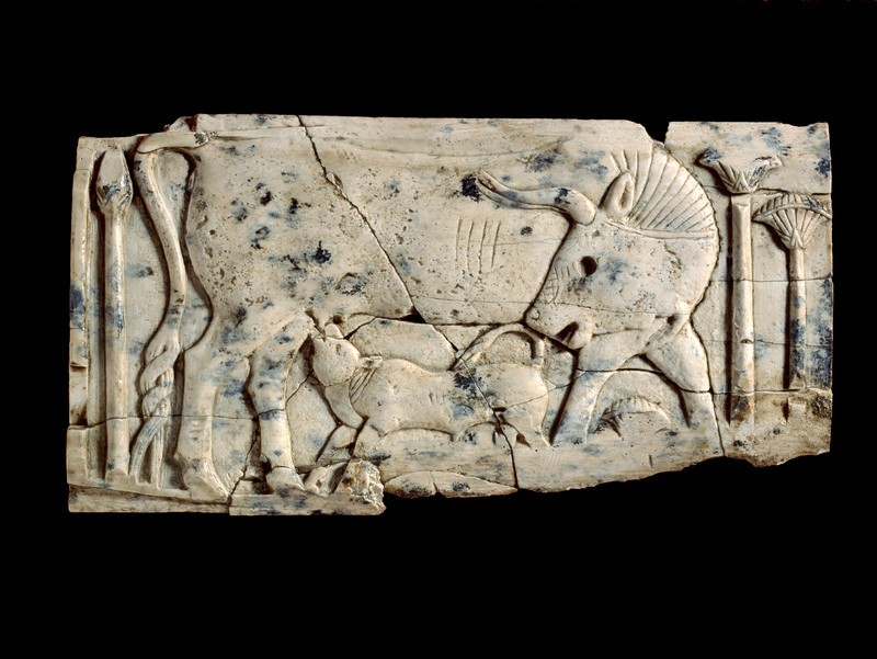 Ivory plaque of a cow and calf among papyrus plants (AN1962.602)