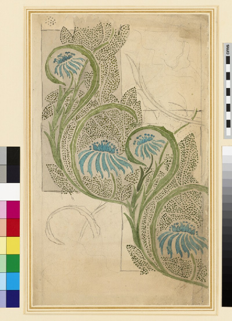 Repeating Designs of Blue Cupidone for Material or a Ceramic Panel