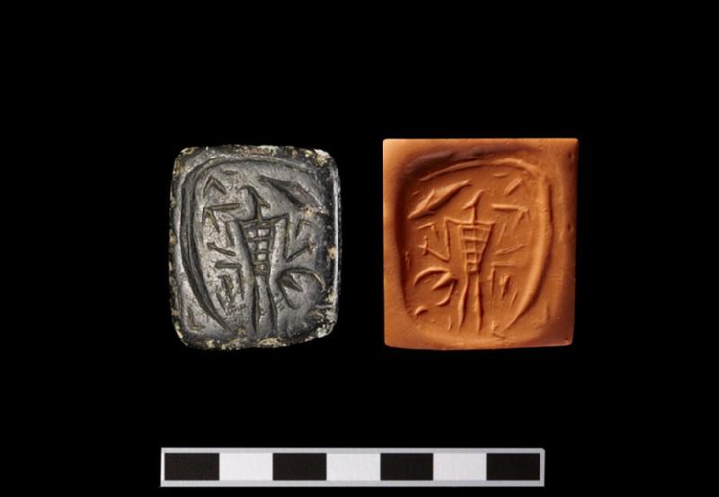 Stamp Seal (Tabloid)