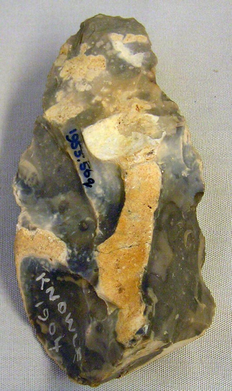 Bifacially worked piece, possibly crude or proto-handaxe (AN1955.56.q, record shot)