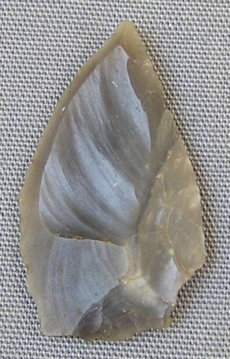 Arrowhead (AN1966.1505, record shot)