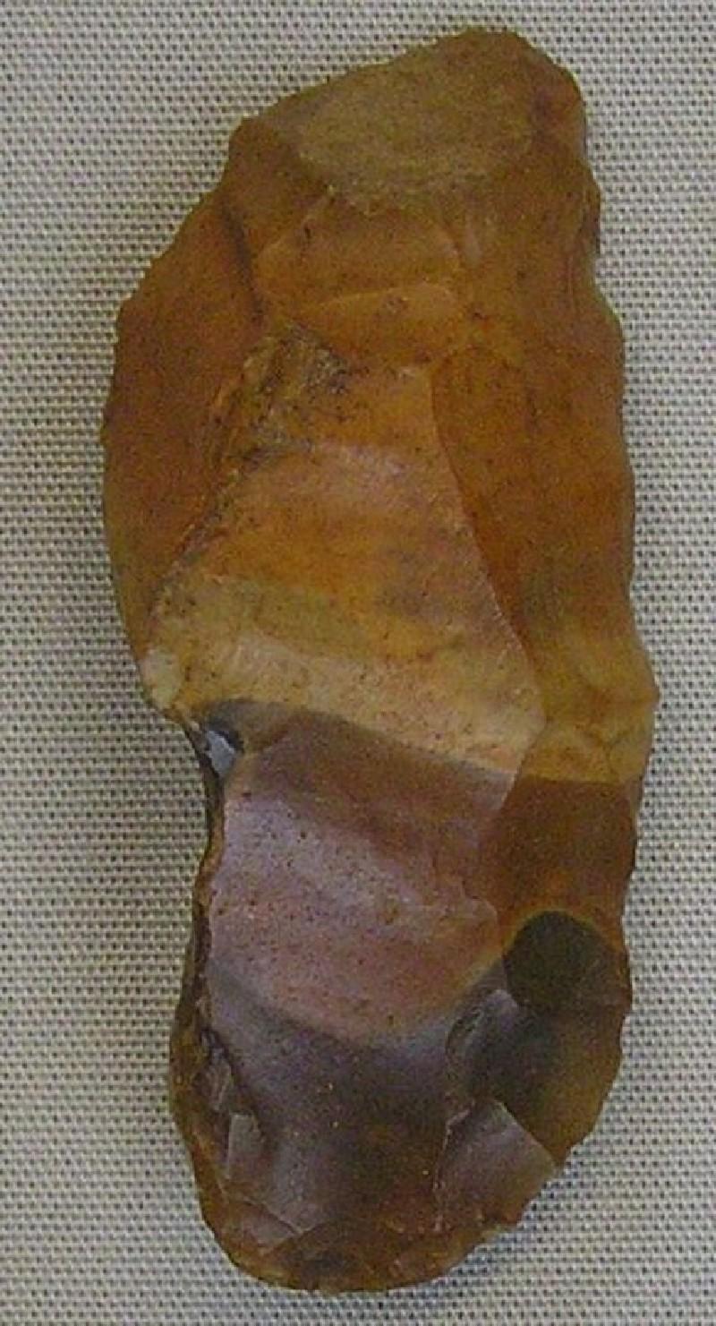 Scraper (AN1966.1415, record shot)