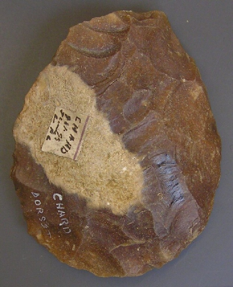 Handaxe (AN1955.67.c, record shot)