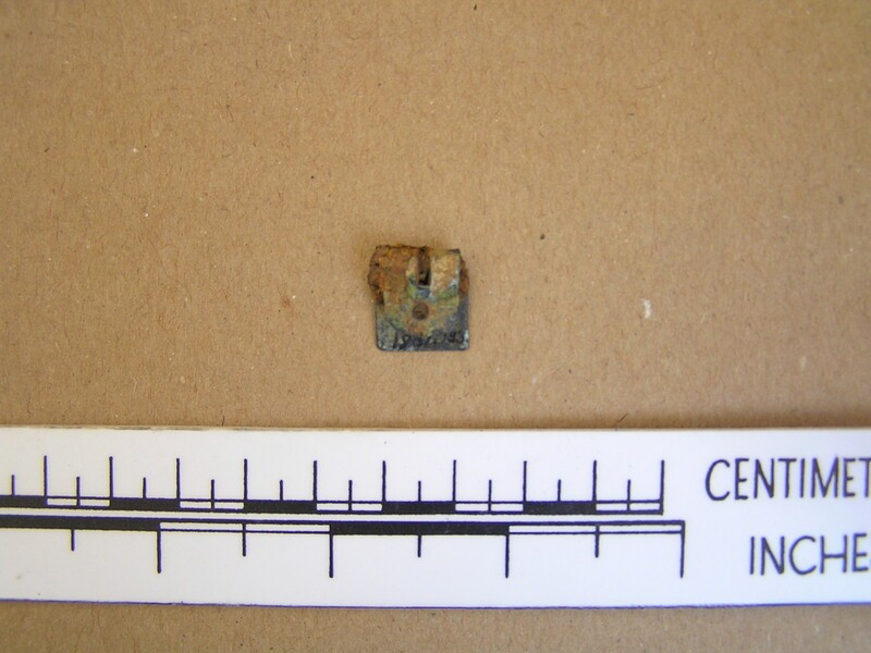 Buckle plate (AN1961.133, record shot)