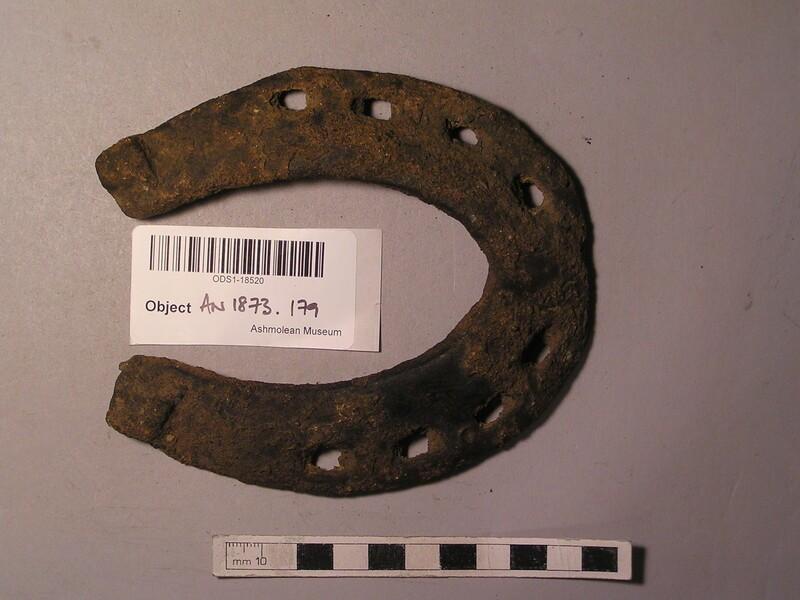 Horse shoe (AN1873.179, record shot)