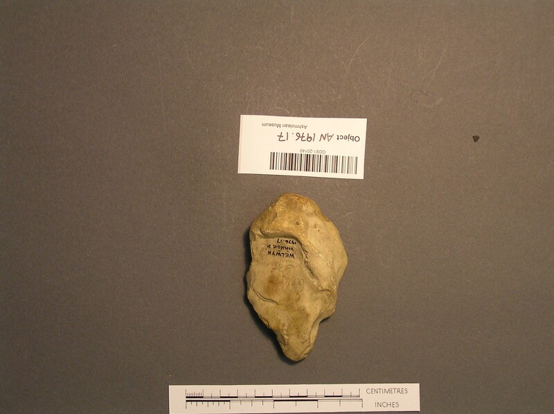 Handaxe (AN1976.17, record shot)