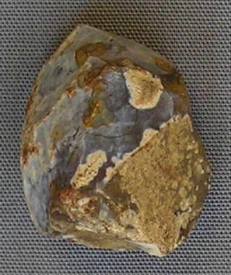 Flint core (AN1962.133, record shot)