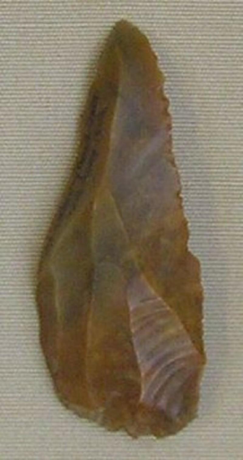 Flake (AN1896-1908.Pr.53, record shot)