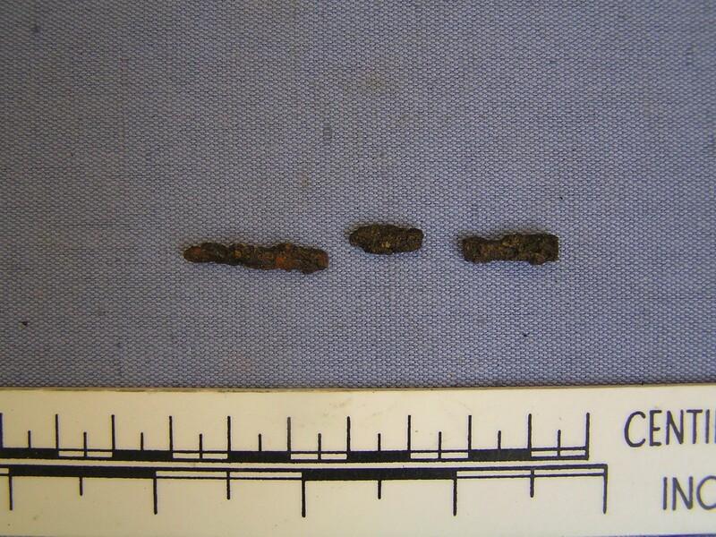 Pin (AN1935.53.f, record shot)