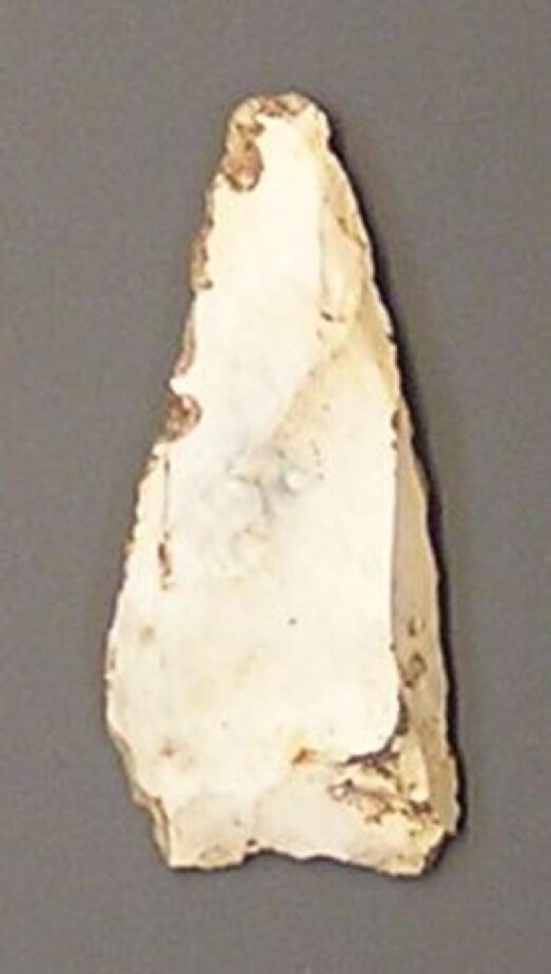 Arrowhead (AN1961.352, record shot)