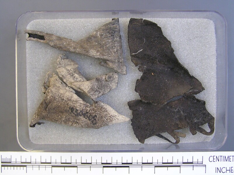 Fragments of leather sandals