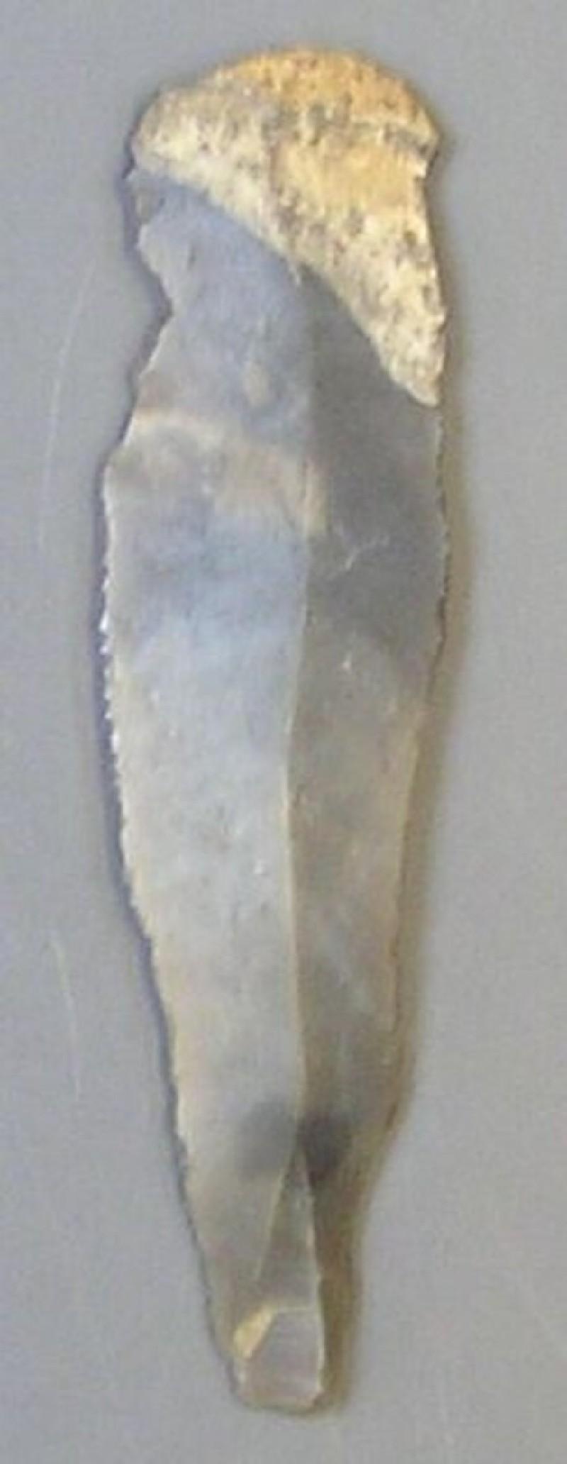 Blade (AN1966.1561, record shot)