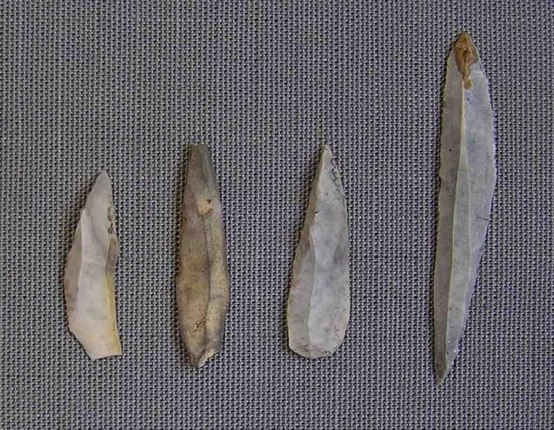 4 microliths