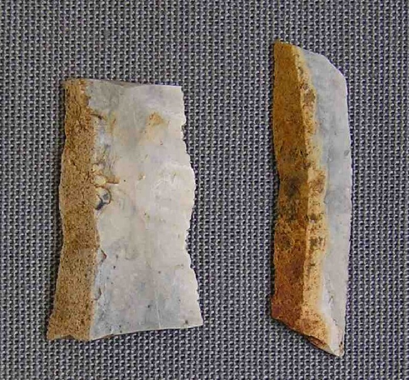 2 bladelet fragments (AN1960.710, record shot)