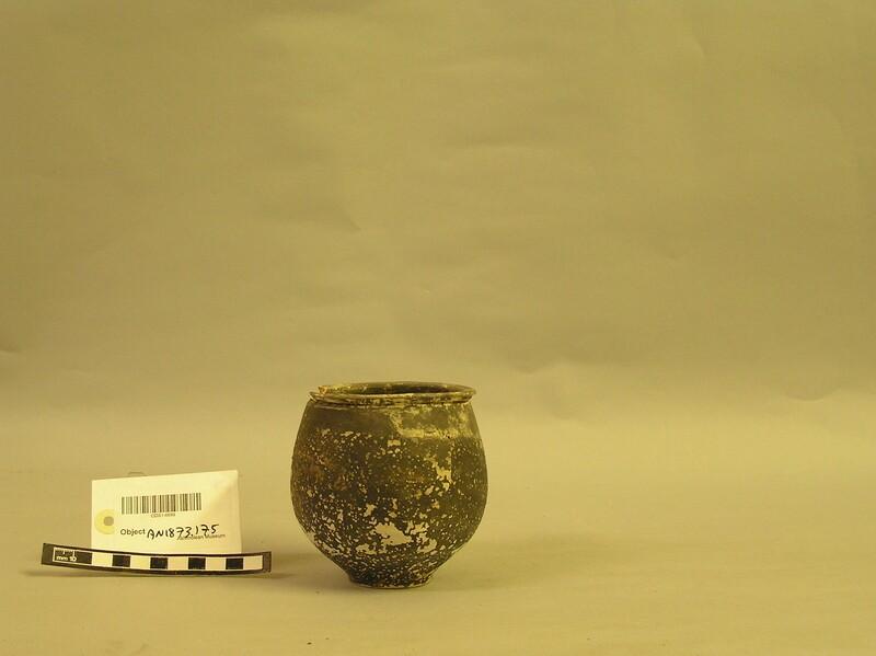 Urn (AN1873.175, record shot)