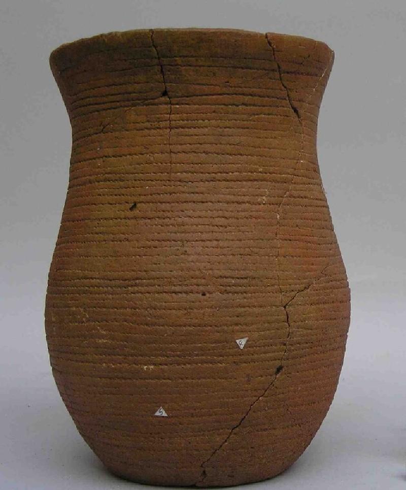 Bell-beaker (AN1991.244, record shot)