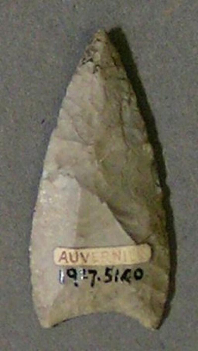 Arrowhead (AN1927.5140, record shot)