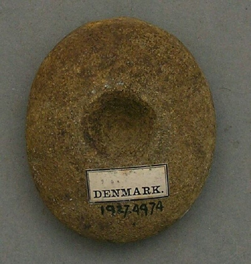 Pebble hammer with incomplete perforation (AN1927.4974, record shot)