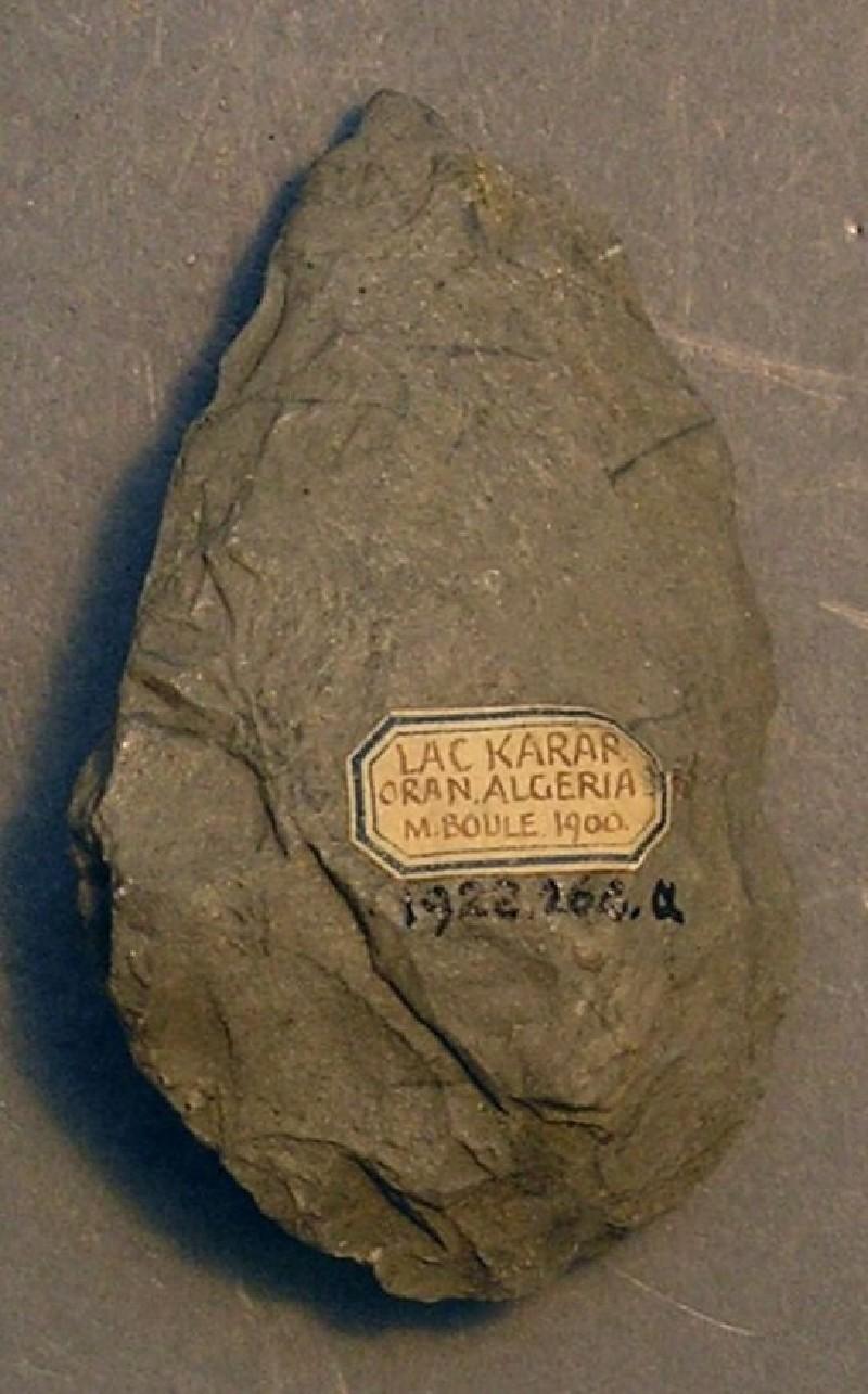 (AN1928.264.a, record shot)
