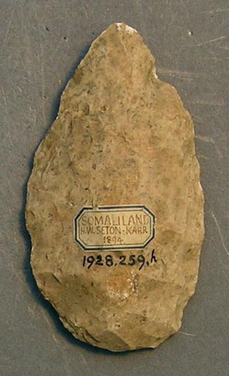 (AN1928.259.h, record shot)