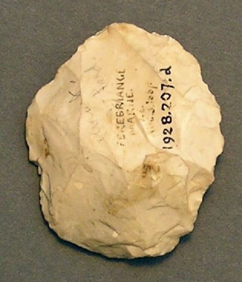 (AN1928.207.d, record shot)
