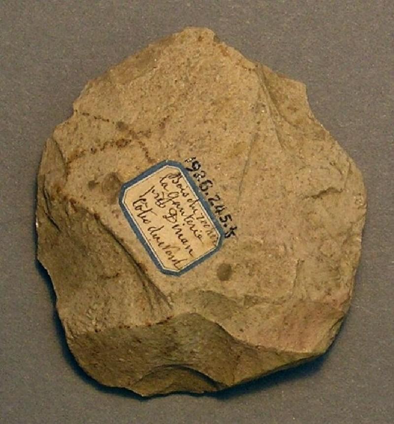 (AN1928.245.f, record shot)
