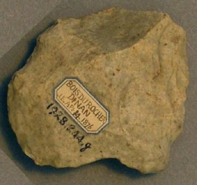 (AN1928.244.g, record shot)