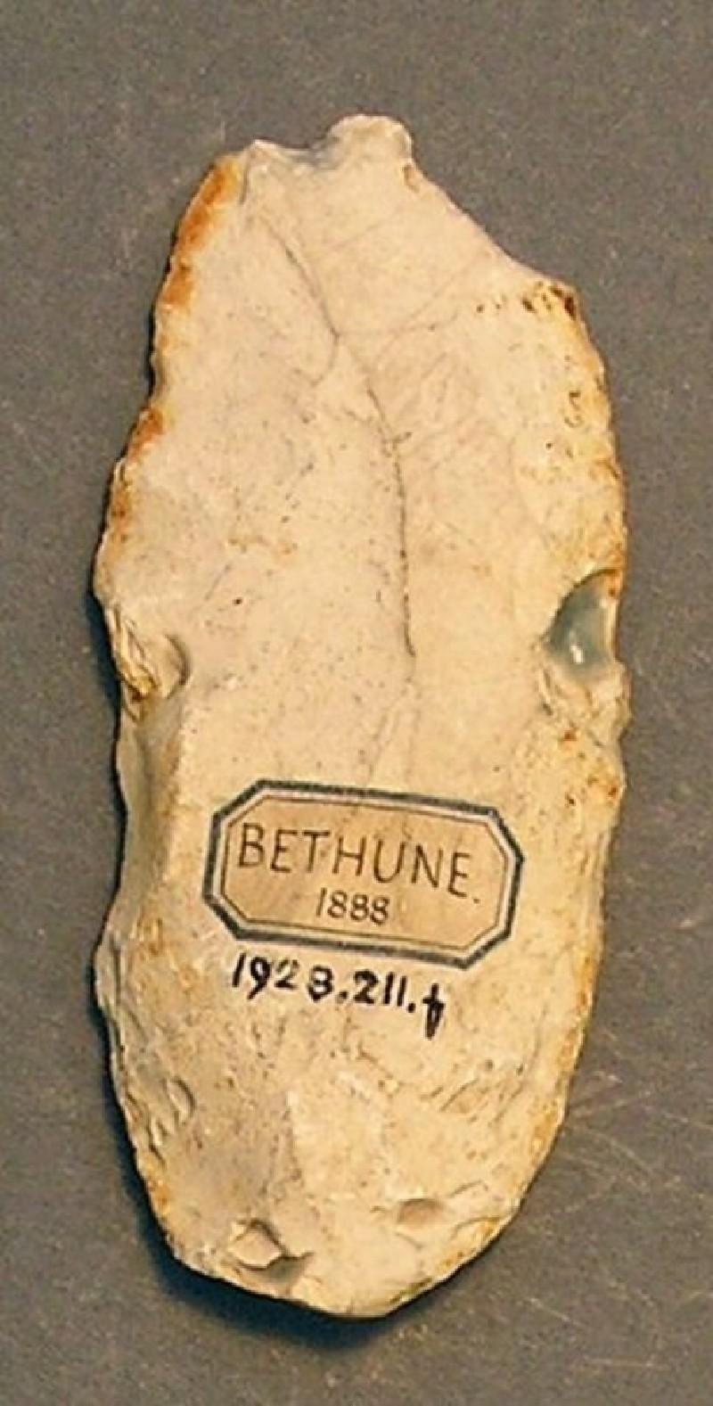 (AN1928.211.f, record shot)
