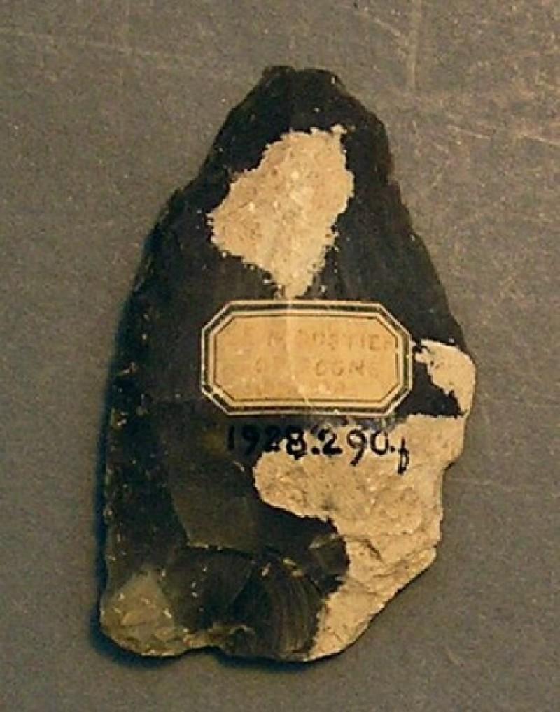 (AN1928.290.f, record shot)