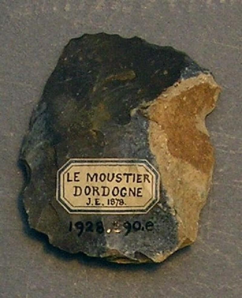 (AN1928.290.e, record shot)