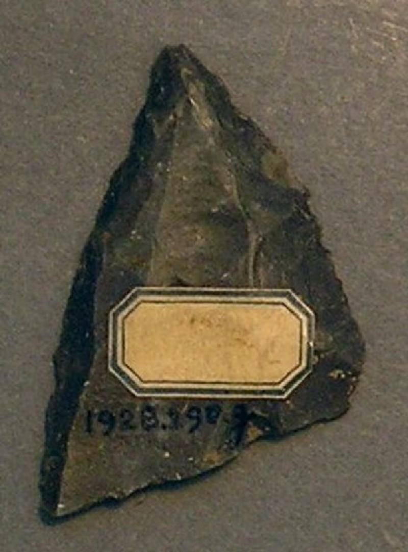 (AN1928.290.g, record shot)