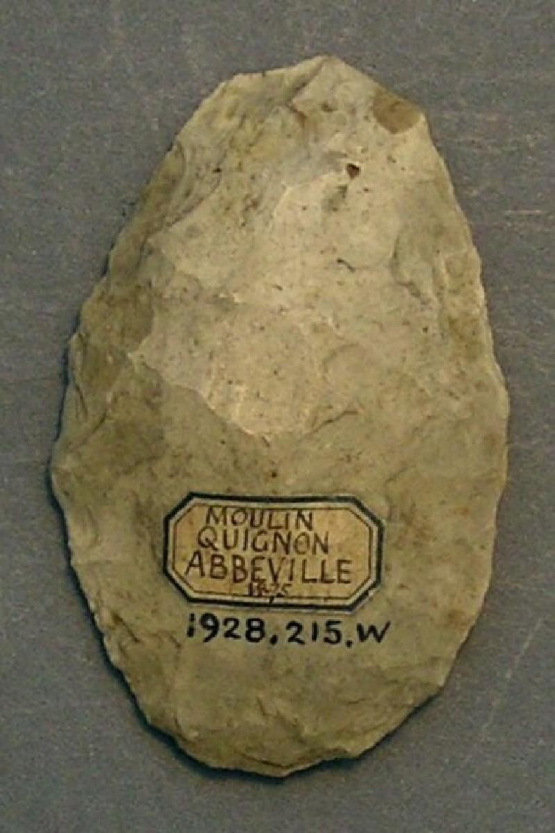(AN1928.215.w, record shot)