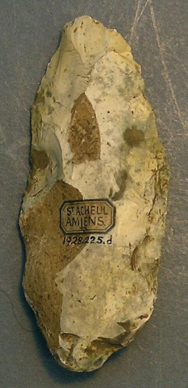 (AN1928.225.d, record shot)