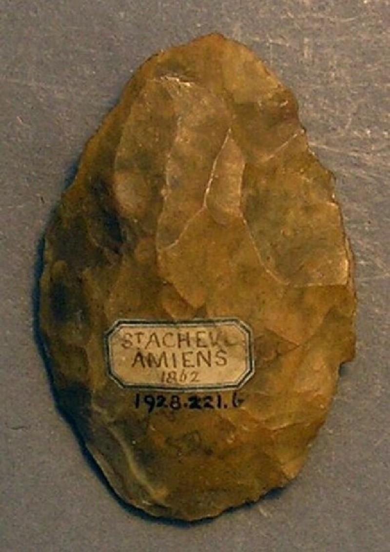 (AN1928.221.b, record shot)
