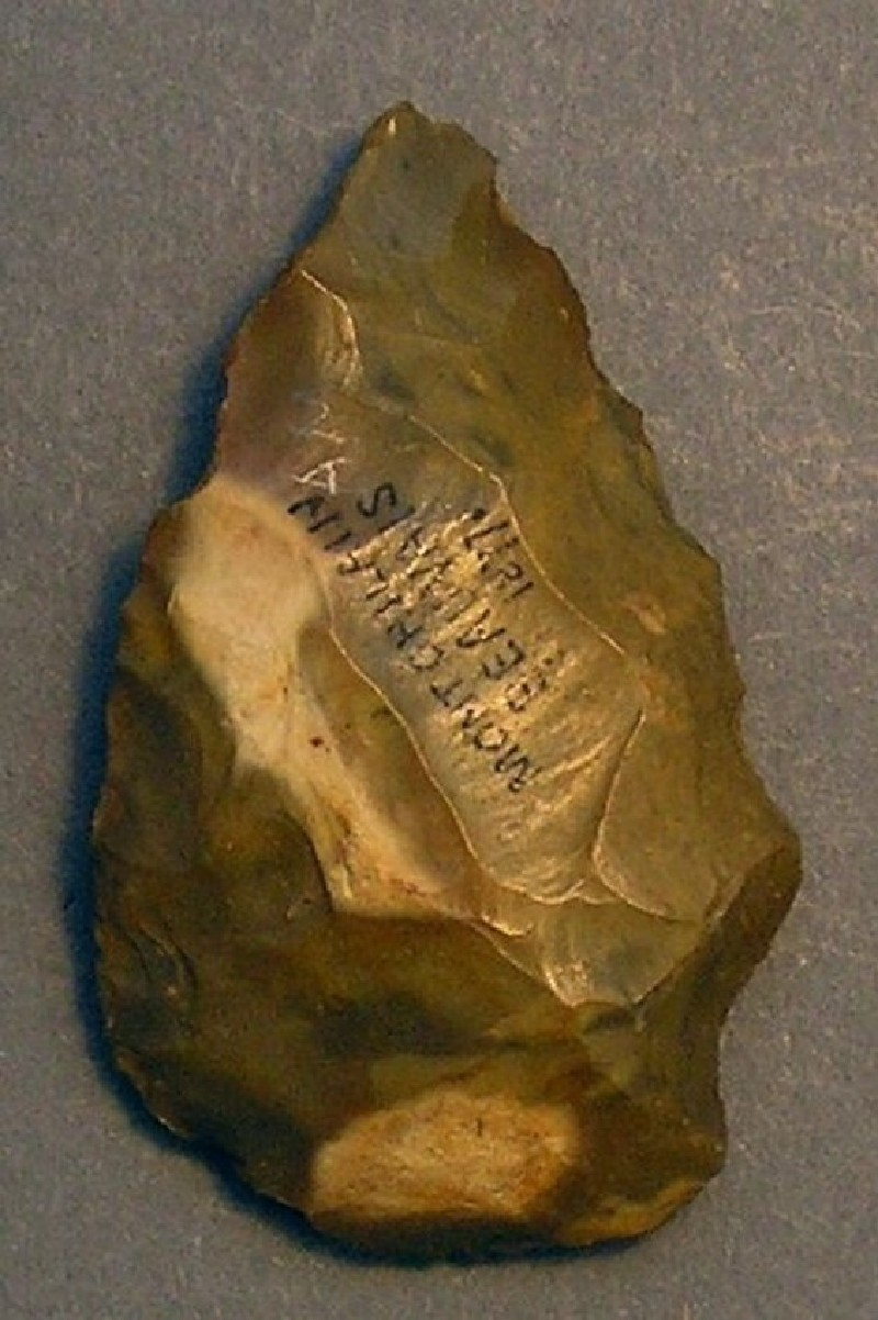 (AN1928.208.n, record shot)