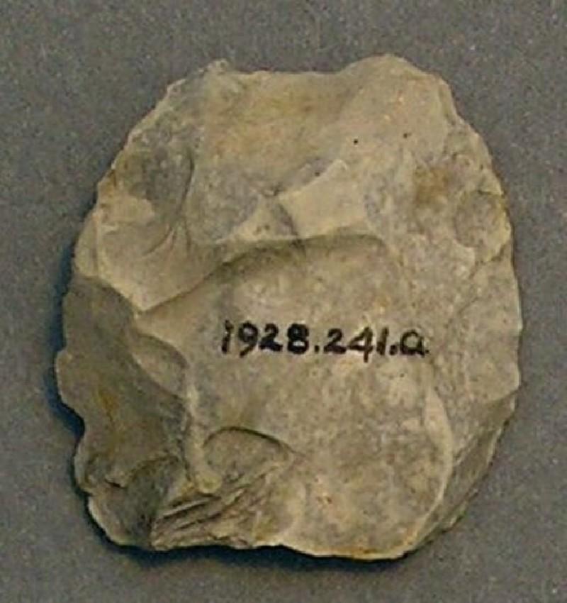 (AN1928.241.a, record shot)