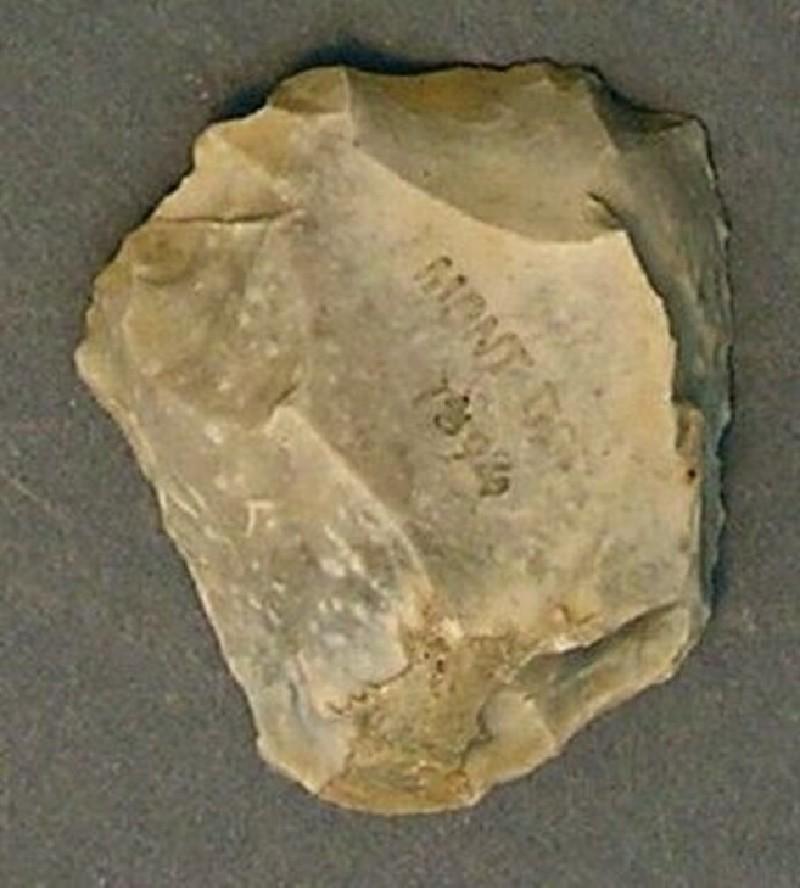 (AN1928.241.e, record shot)