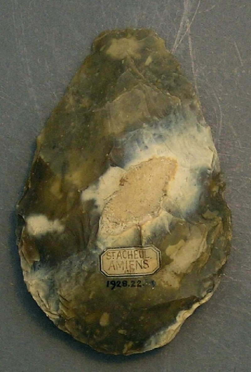 (AN1928.225.f, record shot)