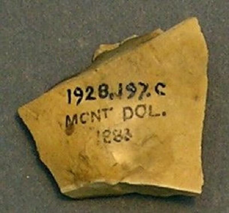 (AN1928.197.c, record shot)
