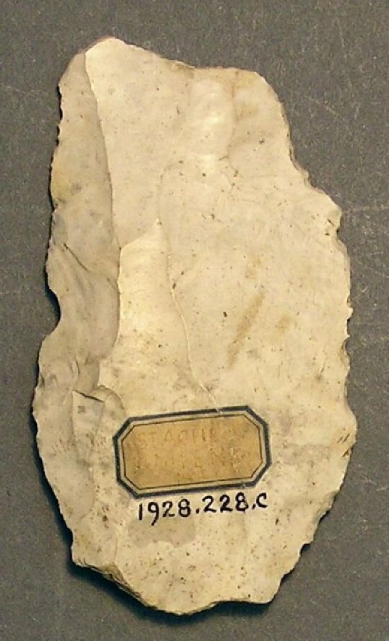 (AN1928.228.c, record shot)