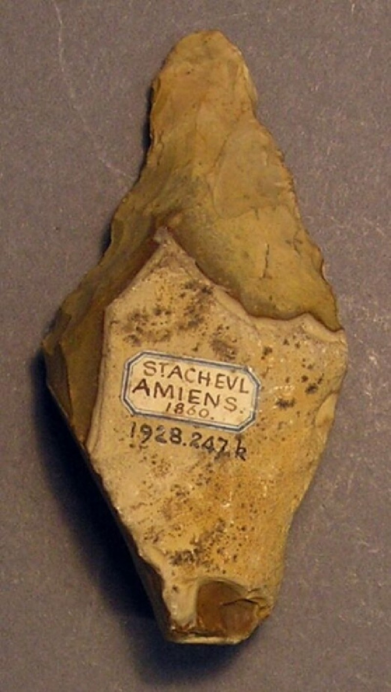 (AN1928.247.k, record shot)