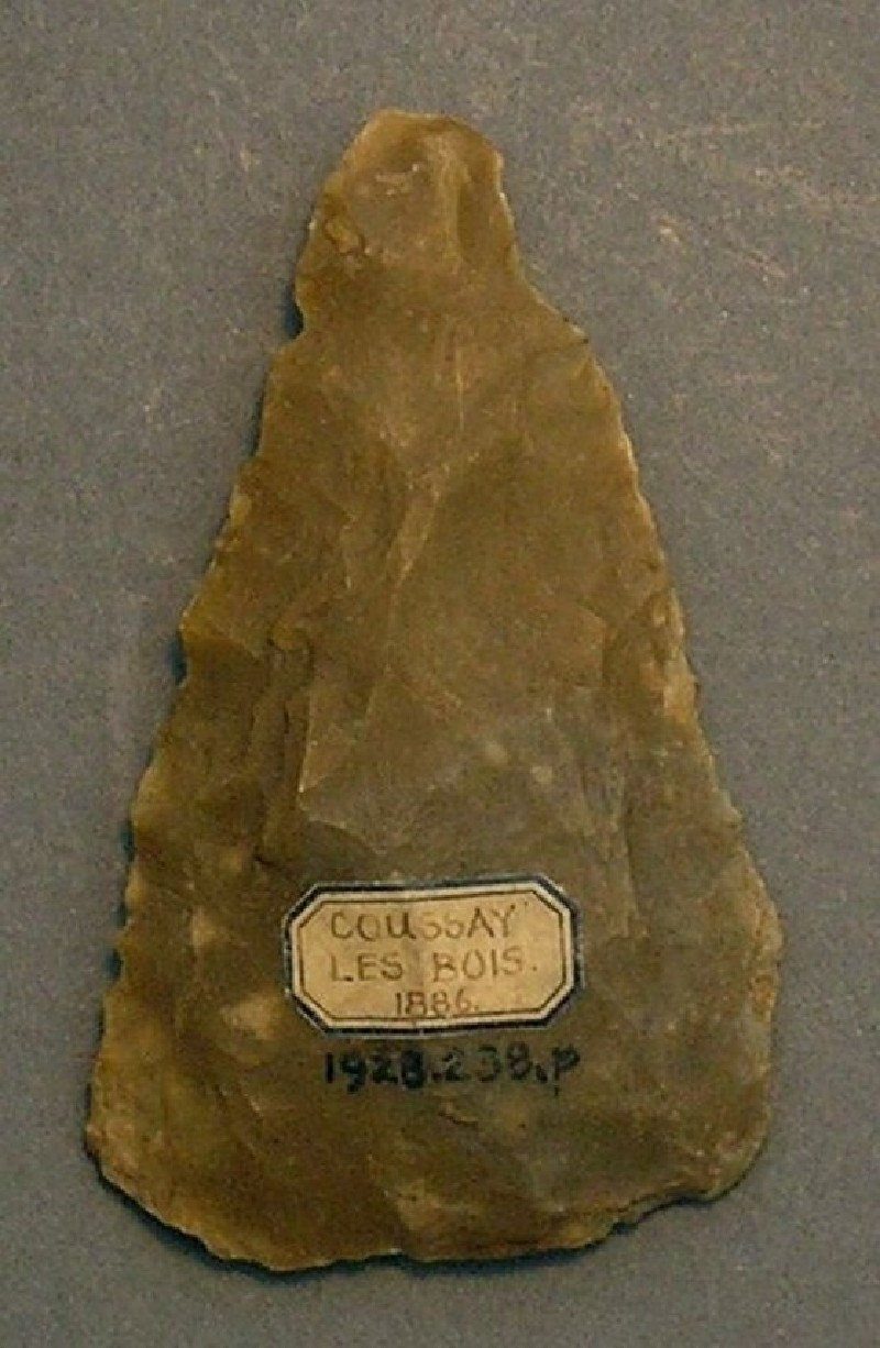 (AN1928.238.p, record shot)