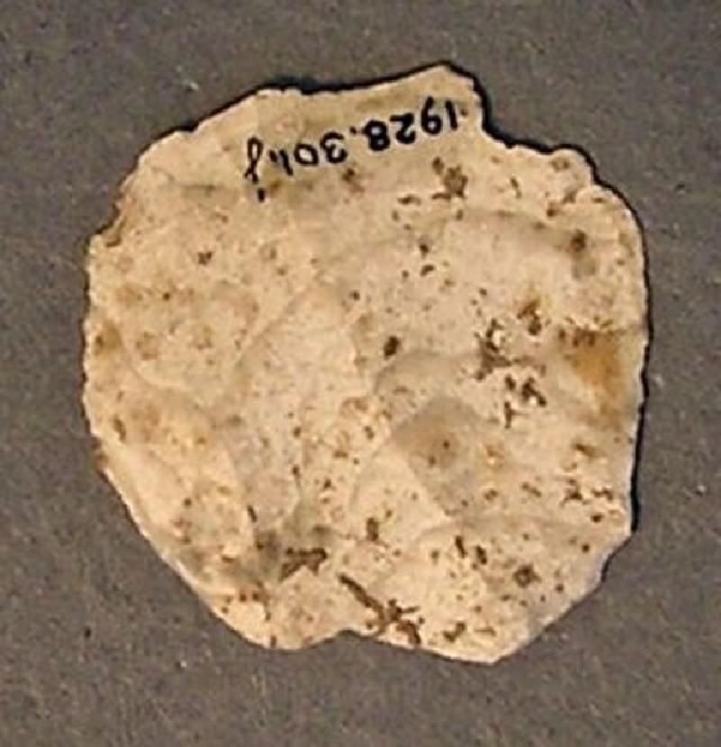 (AN1928.301.j, record shot)