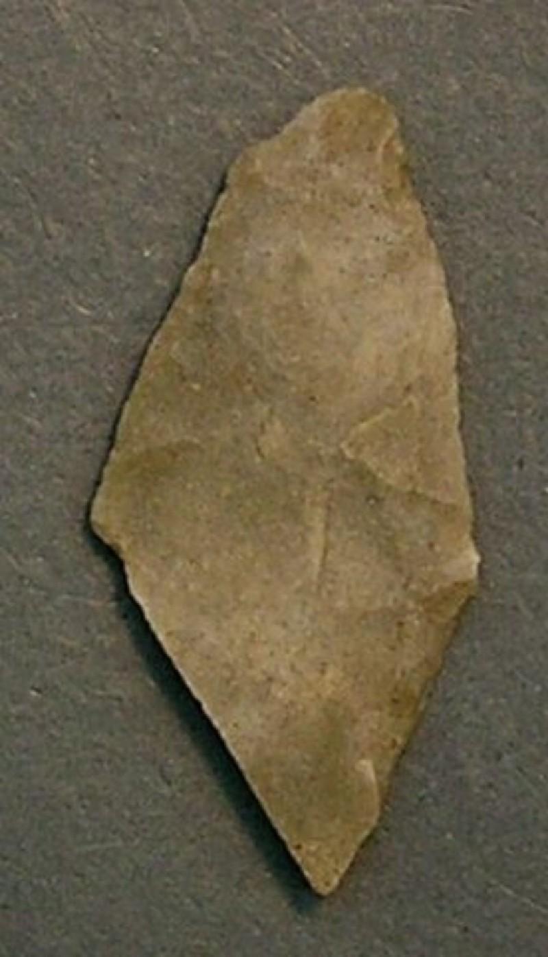 (AN1928.284.j, record shot)